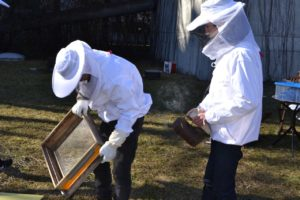 Ein Frühjahrsbesuch bei den Bienen