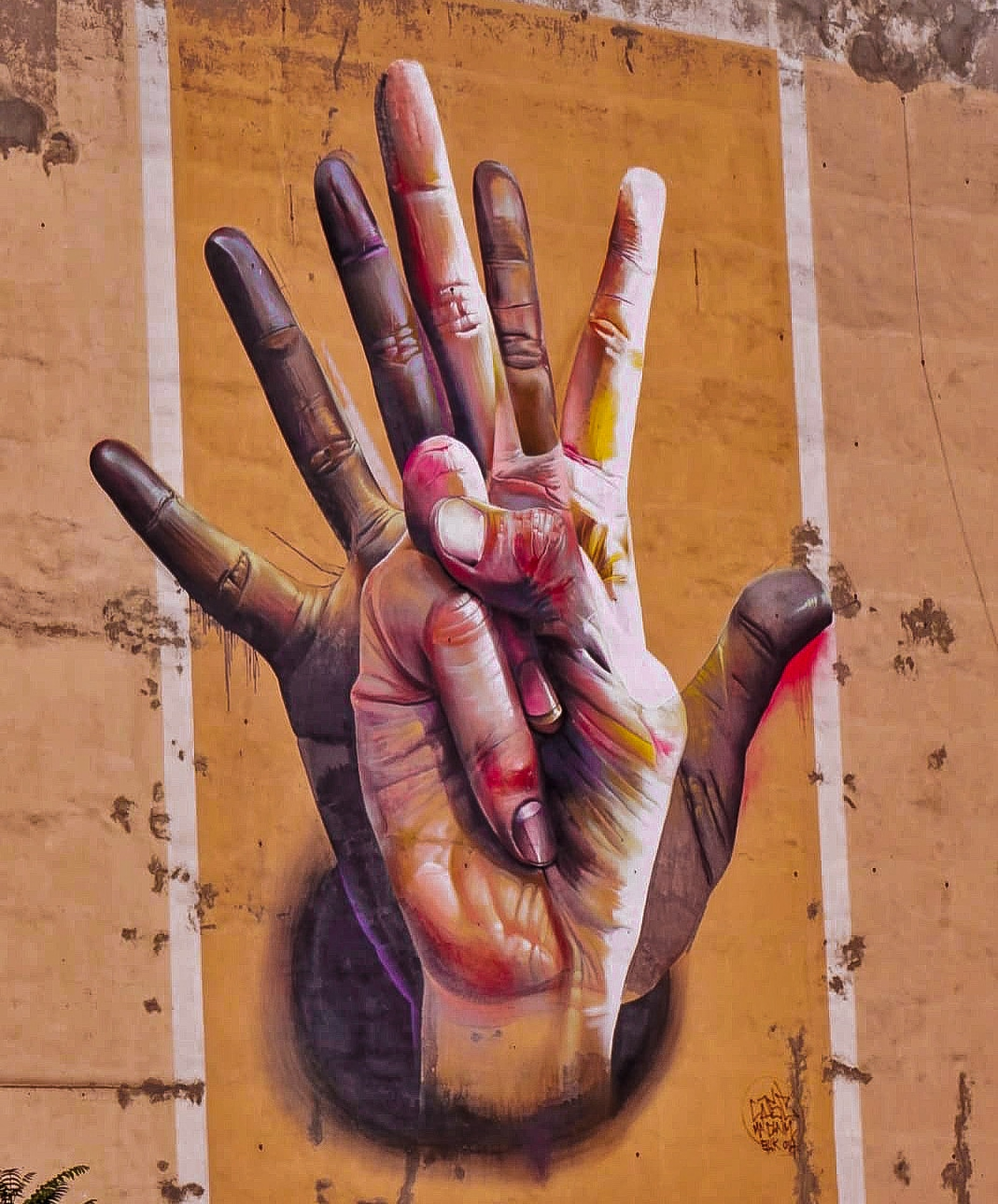 Speaking Hands <br> Day 4 </br>
